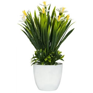 Artificial Mini White and Yellow Daffodils in White Plastic Vase